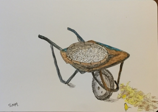 wheelbarrow Stéphanie Mitrano
